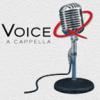 voiceqsound